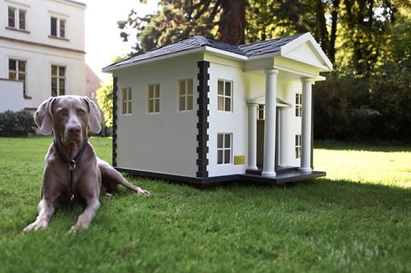 Casas para perros diseños